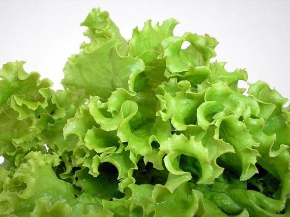 Dicas para manter sua salada fresca por mais tempo