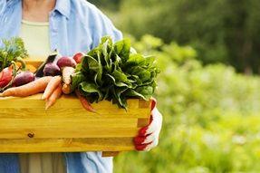 como-tirar-agrotoxico-de-vegetais