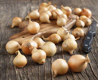 Os tipos de cebola disponíveis no mercado e as características de cada uma