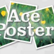 Baixar Ace Poster