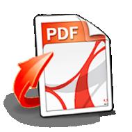 Baixar Renee PDF Converter