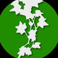 Baixar Ivy (Sidebar, Widgets, RSS)