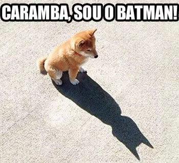 Caramba, Sou o Batman!