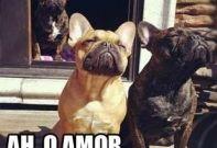 Ah, o Amor…