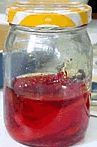 Receita Azeite de Pimentas Vermelhas