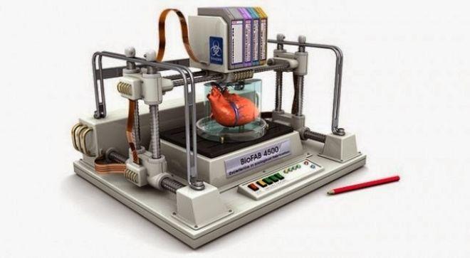 Ratos inférteis conseguem ter filhotes com ovários feitos em impressoras 3D