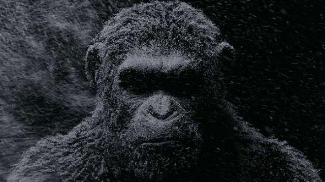 5 filmes imperdíveis desse mês de agosto nos cinemas