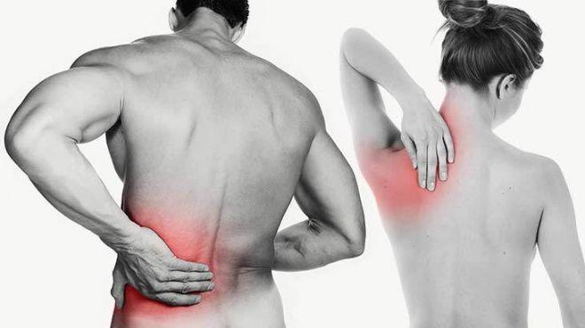 Como cuidar bem da sua coluna e evitar dores nas costas