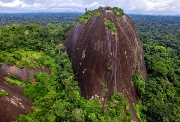 Conheça algumas curiosidades sobre o Suriname