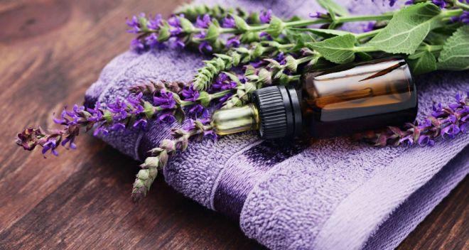 Confira os benefícios da lavanda para a pele