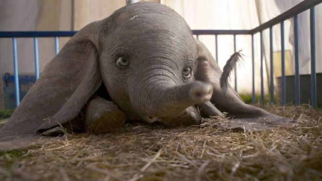 Confira algumas curiosidades sobre o Dumbo