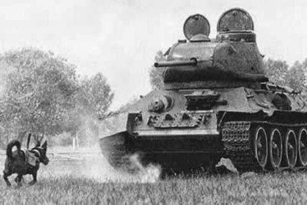 Conheça algumas armas bizarras utilizadas na Segunda Guerra Mundial