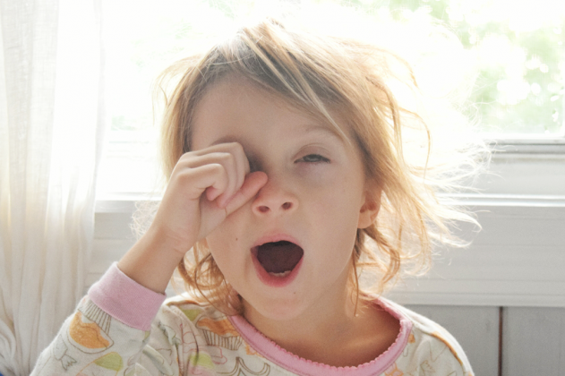 Confira algumas curiosidades sobre o ato de bocejar