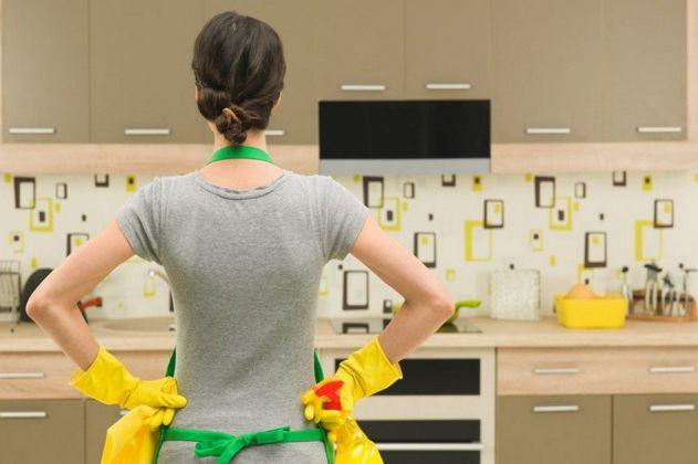 Saiba como manter insetos afastados da sua cozinha