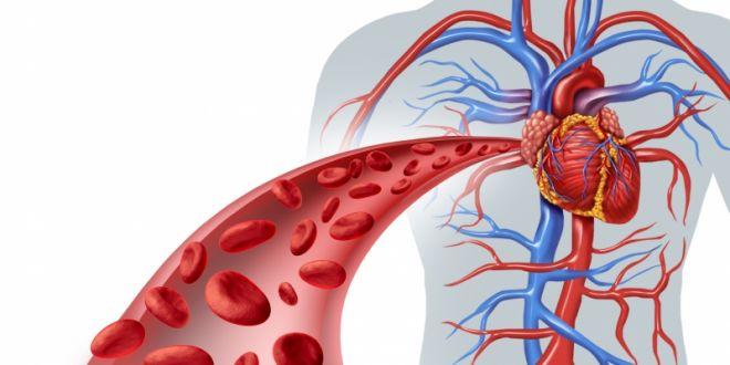 4 dicas para evitar doenças circulatórias comuns no inverno