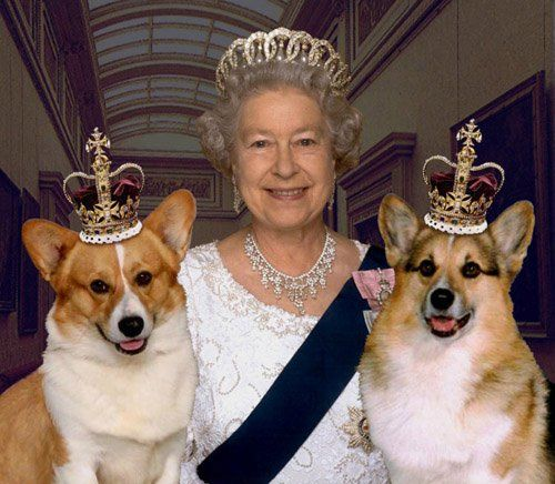 Queen and Royal Corgis