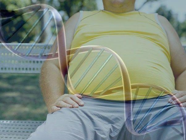 descoberto-gene-da-obesidade