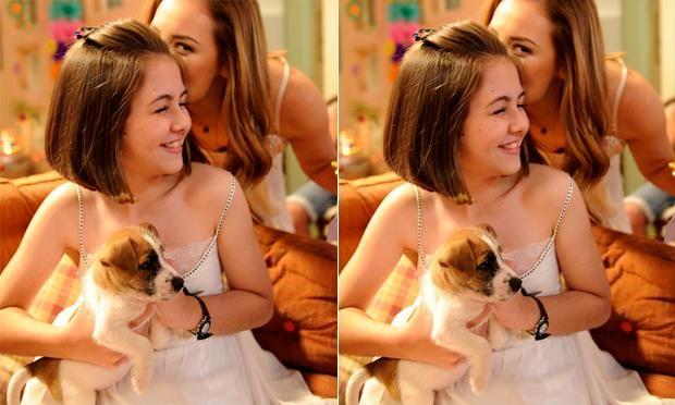 Cachorro de  Amor a Vida