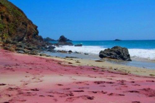 Praia roxa de Pfeiffer (EUA)