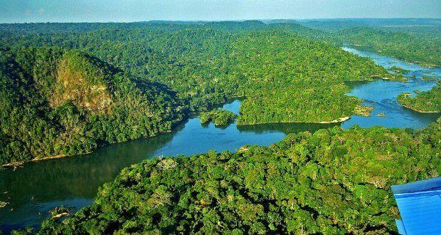 Floresta Amazônica - Brasil