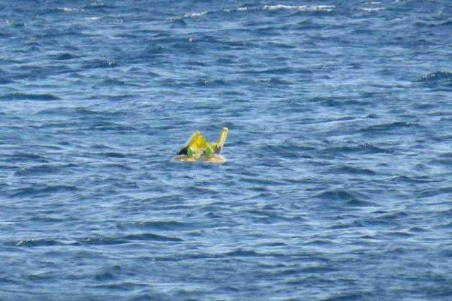 Bebê esquecido em alto mar
