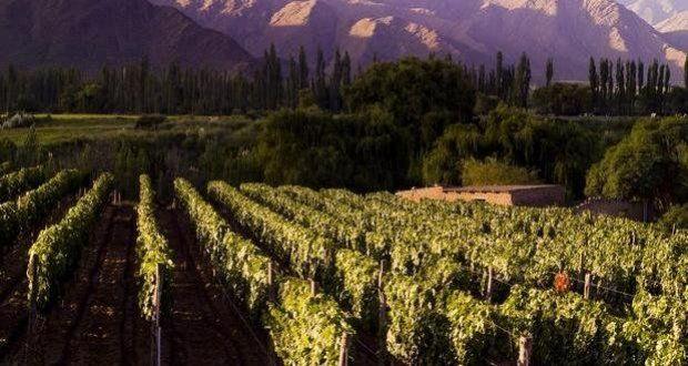 Mendoza – Argentina