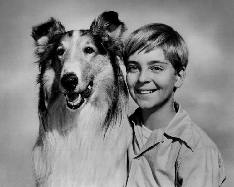 Lassie (19 temporadas)