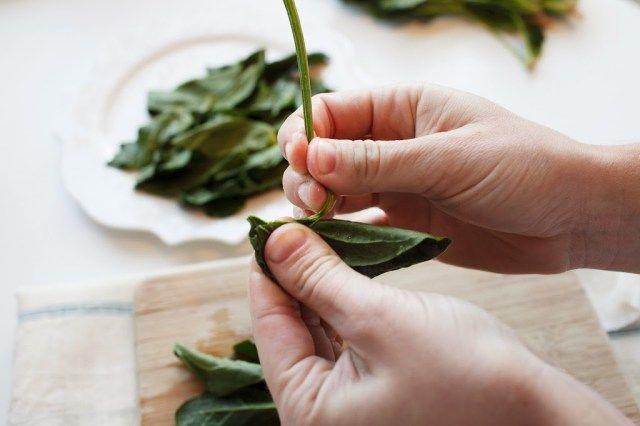 Aprenda escolher e preparar o espinafre para deixar suas refeições mais nutritivas