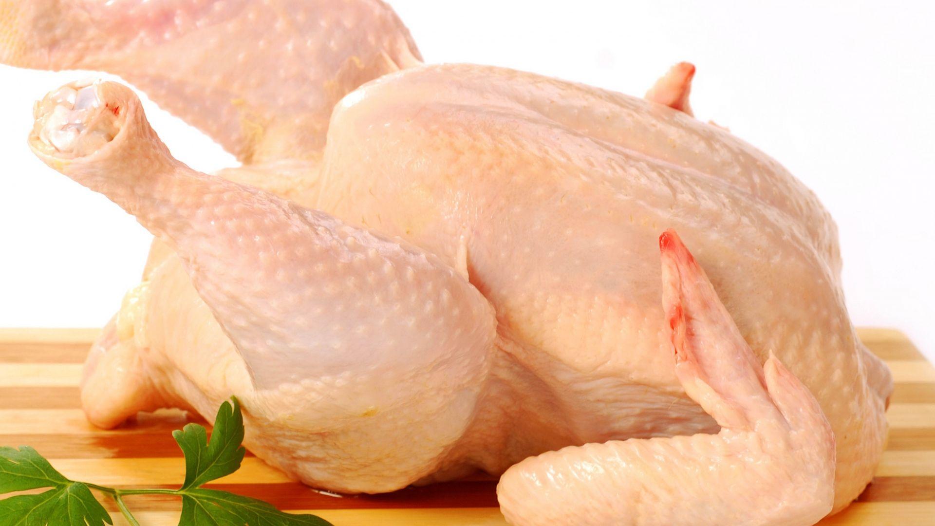 Gosta de receitas com frango? Veja detalhes que você precisa saber sobre o alimento